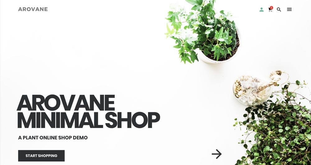 Arovane Theme - Minimal WooCommerce WordPress Theme